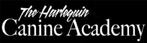 The Harlequin Canine Academy